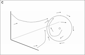 Generic cell cycle model examples of a three dimensional phase space solid arrows are samples of the vector field dashed arrows are simulation results following the vector field sciox Images